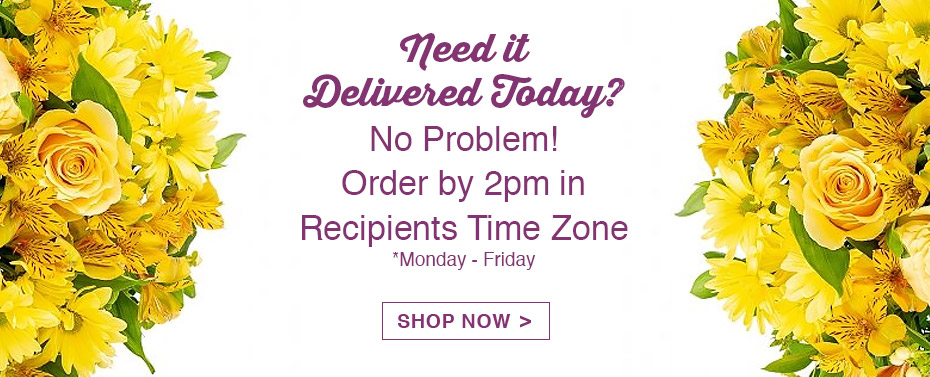 Delivery Today? No Problem! Order By 2pm in Recipients Time Zone