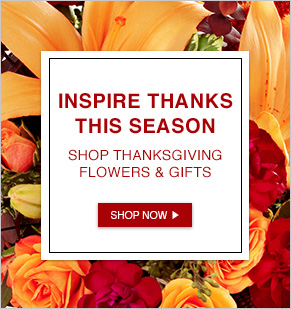 Inspire Thanks This Season