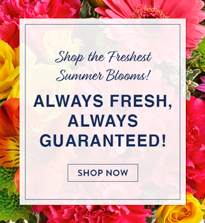 Shop The Freshest Summer Blooms! Always Fresh, Always Guaranteed!