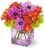 Flower Bouquets: Bright Surprise Bouquet